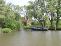 Biesbosch Natuurtocht
