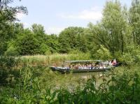 Rondje Hollandse Biesbosch