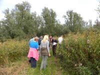 Oude polders, Nieuwe natuur